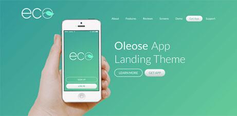 thiet-ke-website-landing-page