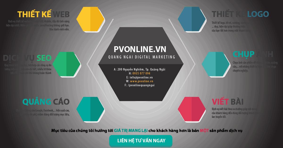 dich vu pvonline-01