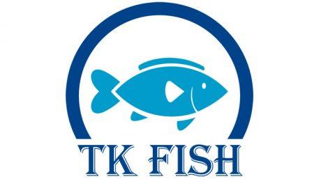logo-tinh-ky